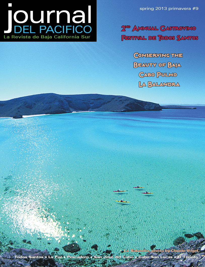 Spring 2013 Issue of Journal del Pacifico