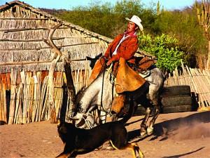 """""""Los Otros Californios""""/""""The Other Californians"""" Todos Santos, Baja, Mexico"""