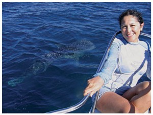 Deni Ramirez, Whale Sharks, Sea of Cortes, La Paz, Baja, Mexico