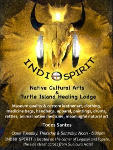 IndiO Spirit, Todos Santos, Baja, Mexico