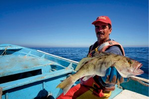 Porfirio Zuñiga displaying a hand-caught sand bass.  Photo: Carlos Aguilar, Baja, Mexico