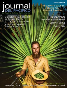 Spring 2016 cover of Journal del Pacifico, photo by Kate Turning