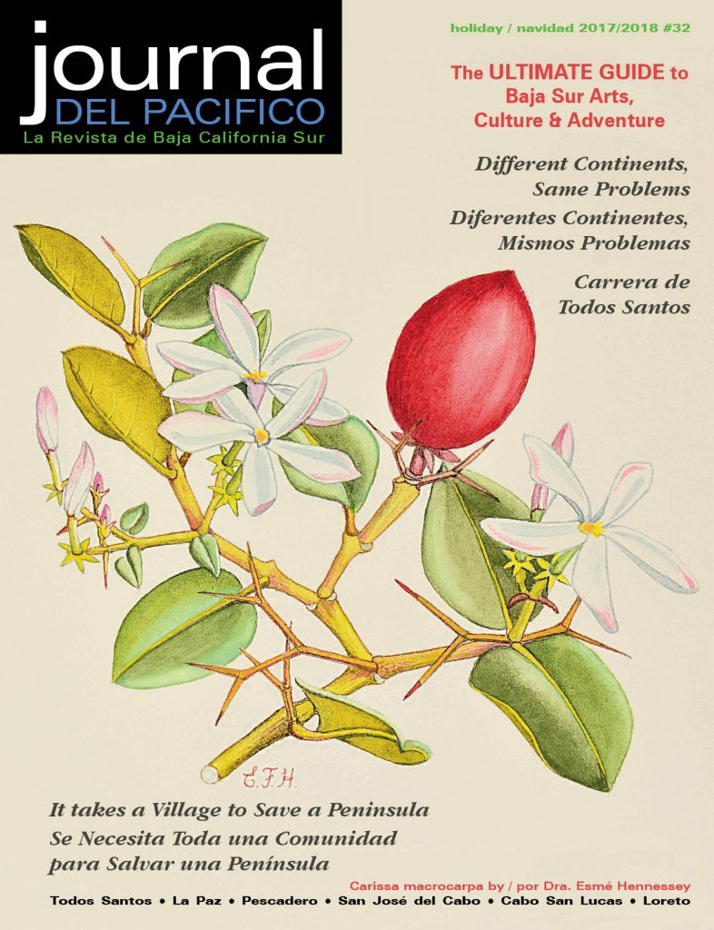Journal del Pacifico Holiday 2017/2018 cover by Dr. Esme Hennessey