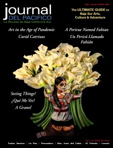 Journal del Pacifico Fall 2020 cover by Kate Turning, Todos Santos, Baja, Mexico